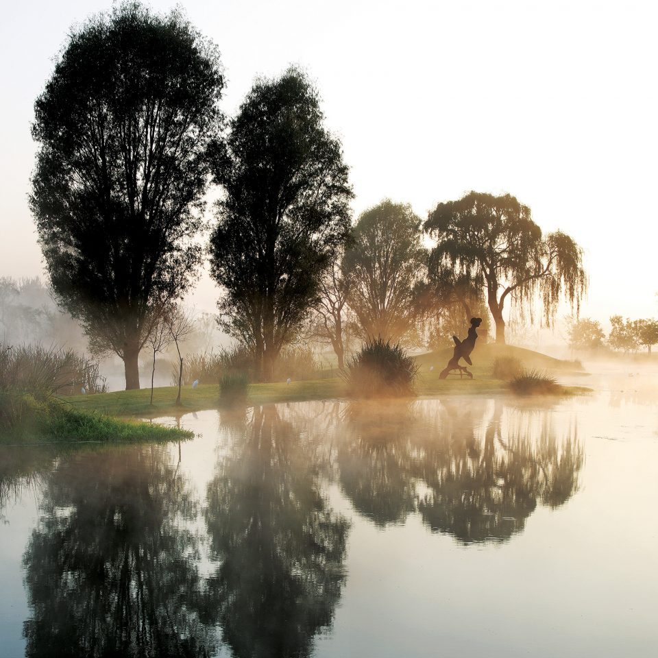 tree water Nature atmospheric phenomenon River morning mist plant Winter season pond woody plant landscape waterway evening Fog sunlight Lake wetland autumn