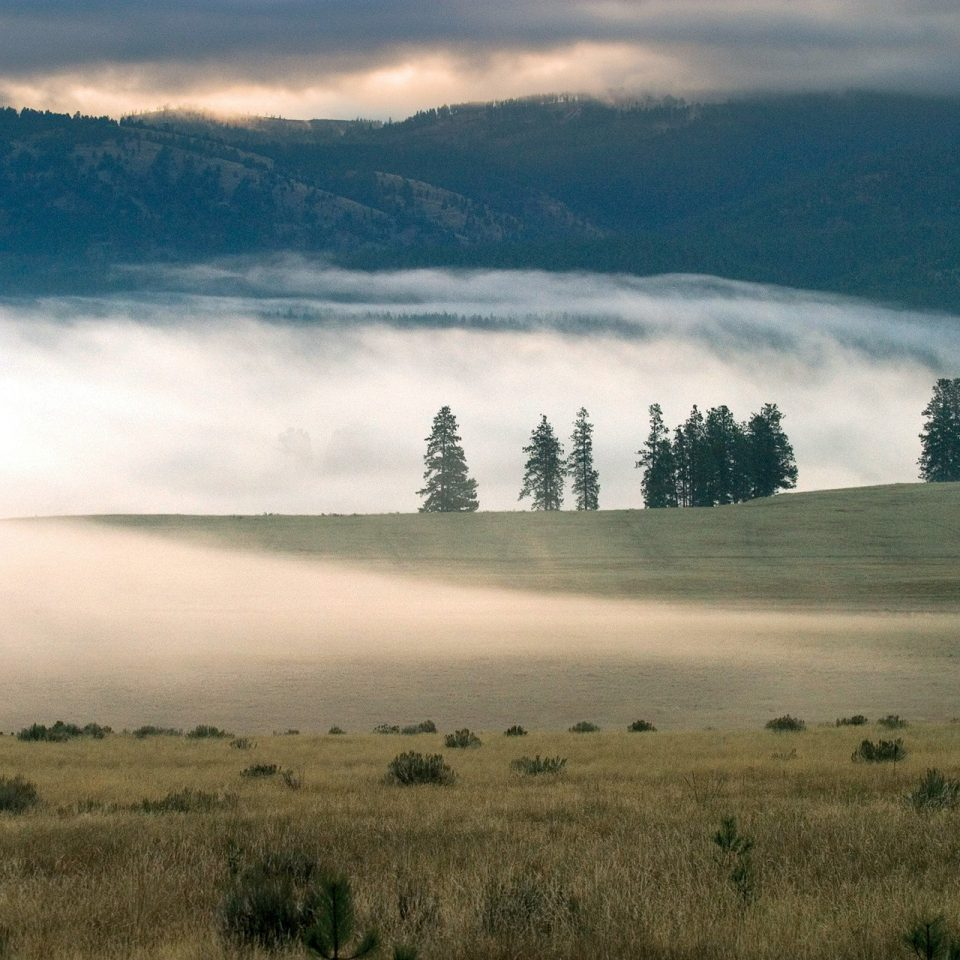 grass sky mountain habitat Nature mist mountainous landforms field atmospheric phenomenon Fog wilderness plain cloud grassland horizon natural environment tree weather morning hill prairie dawn landscape rural area steppe plateau sunrise meadow haze lush distance highland