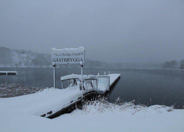 snow Winter weather Nature atmospheric phenomenon freezing season blizzard winter storm ice Fog mist arctic day