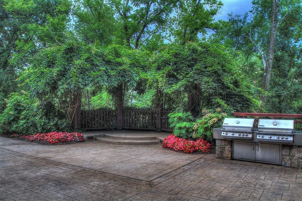 tree ground property red backyard Garden yard walkway plant outdoor structure plantation shrub Forest stone wooded
