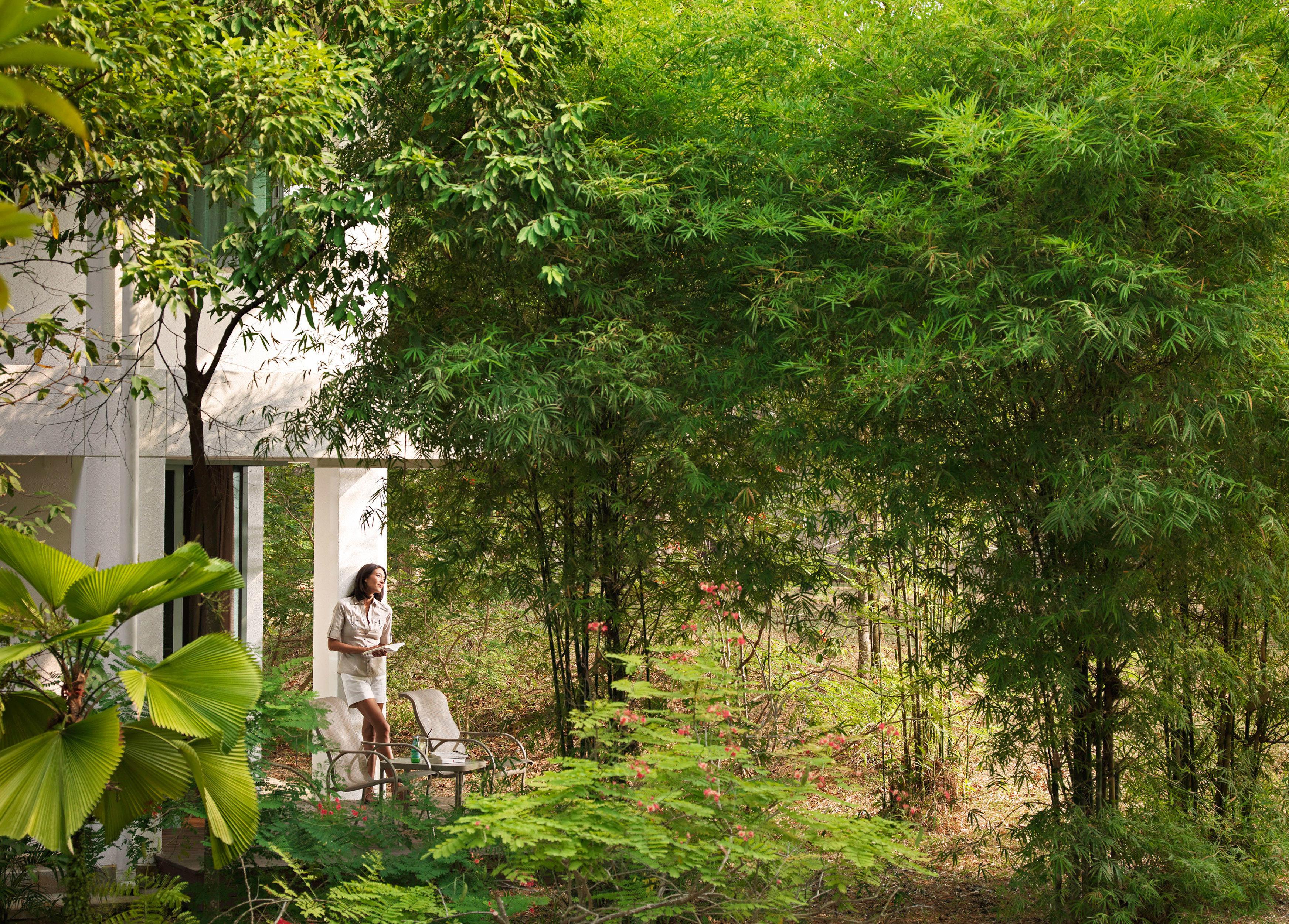 Forest Golf Island Jungle Outdoors Patio Scenic views Spa tree grass green flora plant botany flower Garden woodland woody plant leaf yard rural area backyard plantation shrub rainforest lush