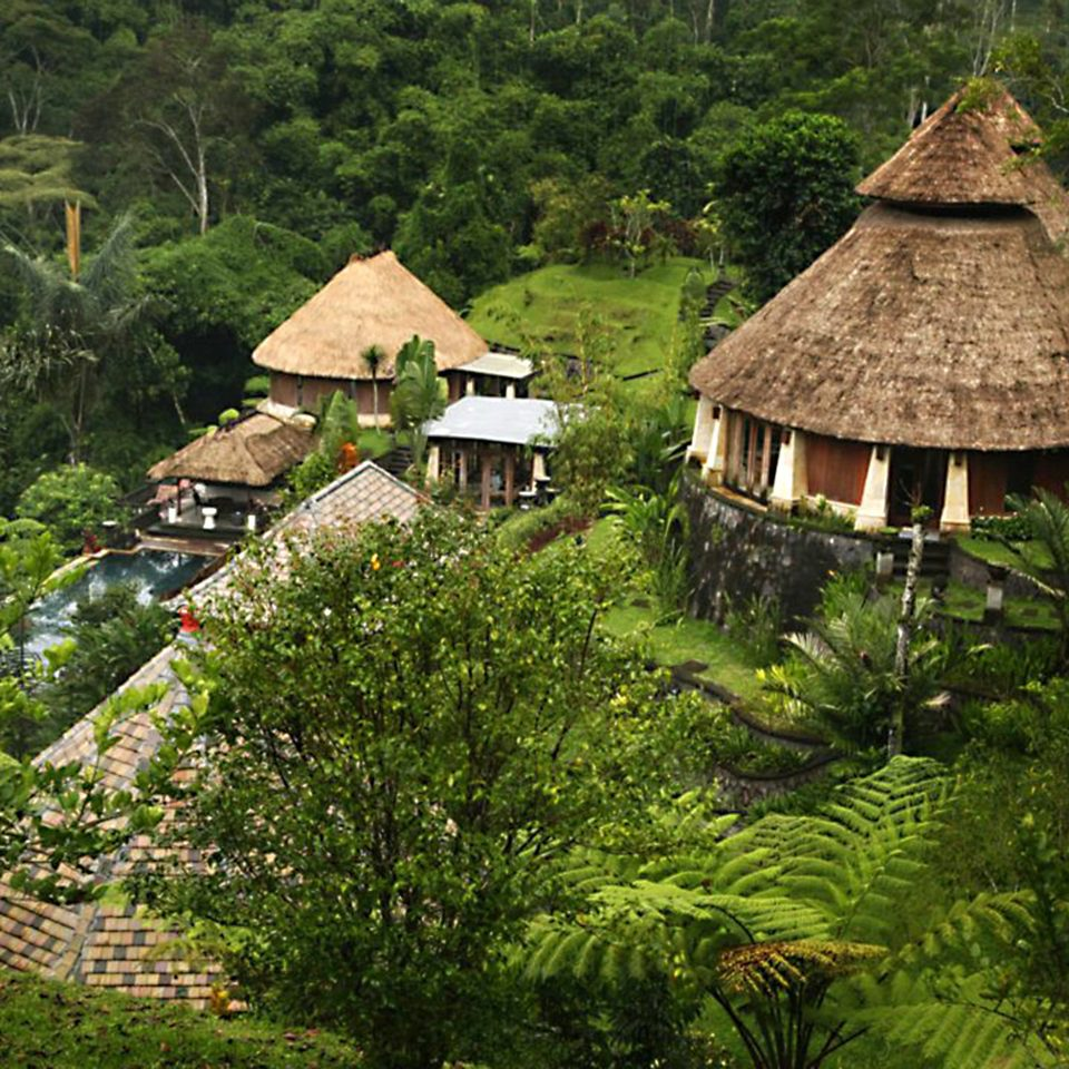 Grounds Jungle Luxury tree ecosystem botany hut Village Forest rural area Garden Resort rainforest flower surrounded lush stone
