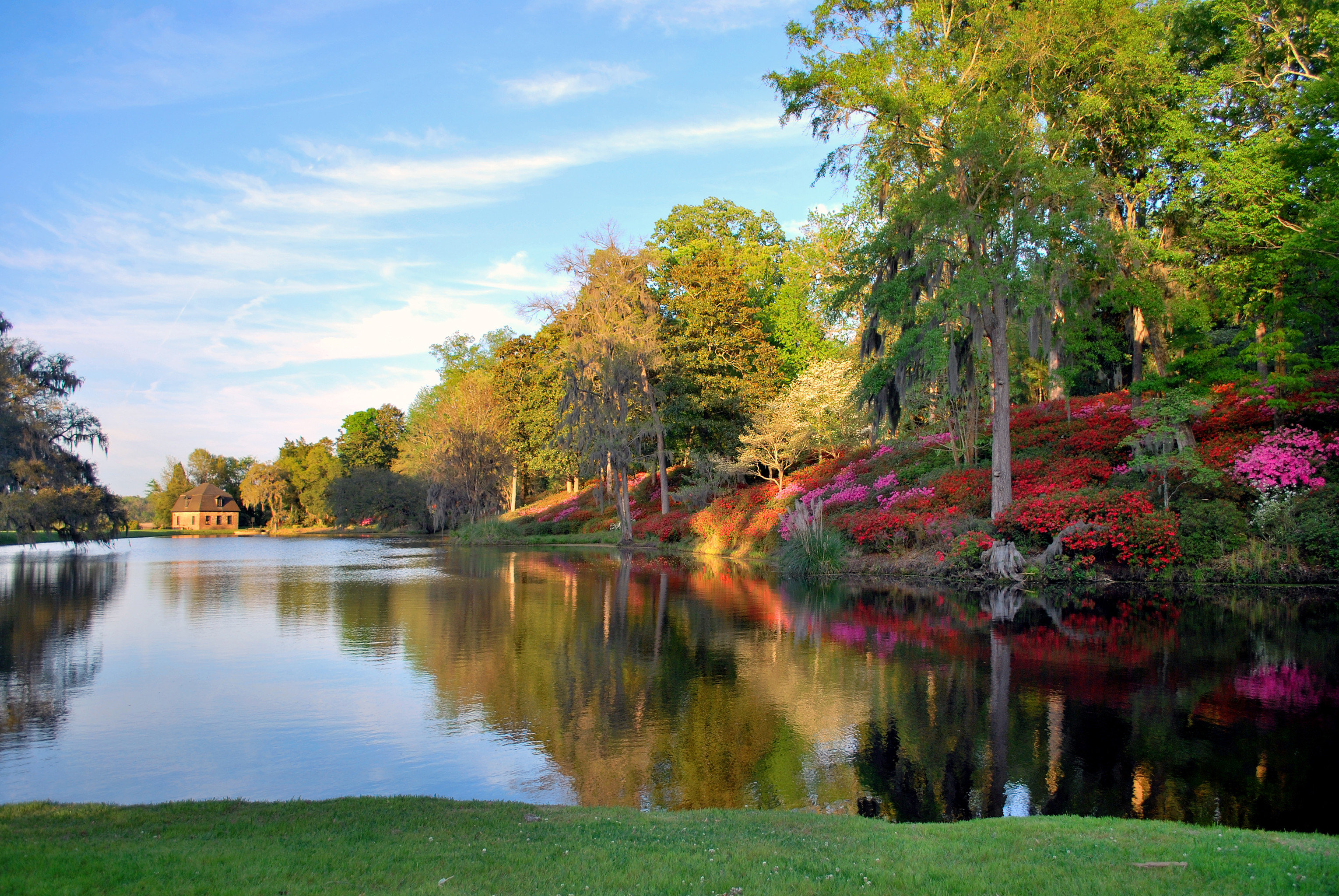 Forest Grounds Outdoors Scenic views Waterfront tree water sky grass Nature pond River Lake autumn botany plant season leaf woody plant Garden park flower landscape woodland surrounded