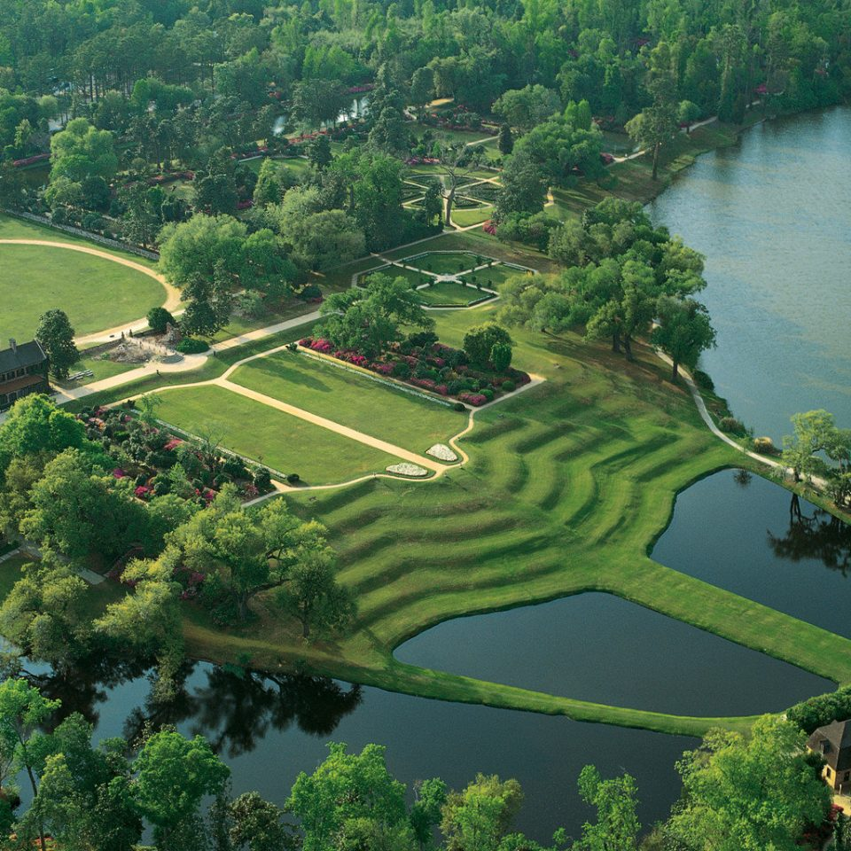 Forest Grounds Outdoors Scenic views Waterfront tree bird's eye view aerial photography Nature green River sport venue landscape rural area plant reservoir Lake Garden surrounded lush