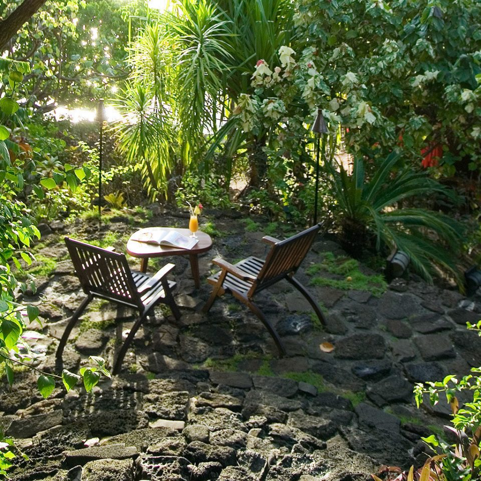 Hotels Lounge Outdoor Activities Outdoors Resort Scenic views tree bench ground habitat park natural environment wilderness rainforest Forest woodland Garden botany Jungle pond backyard leaf trail yard stream flower plant tropics surrounded porch stone shade bushes wooded