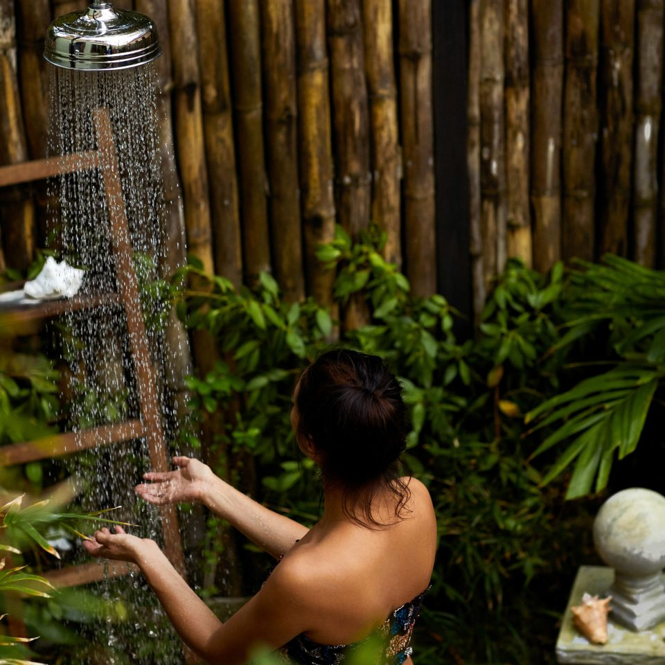 plant leaf tree Jungle girl grass Garden Forest rainforest flower