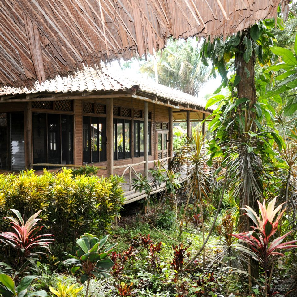 Forest Jungle Lodge Outdoors Romantic Rustic plant building property Resort botany house home Garden cottage eco hotel restaurant flower roof