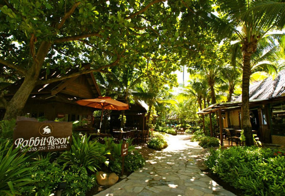 tree Resort Jungle Garden rural area backyard Village yard flower cottage rainforest plant tropics Forest