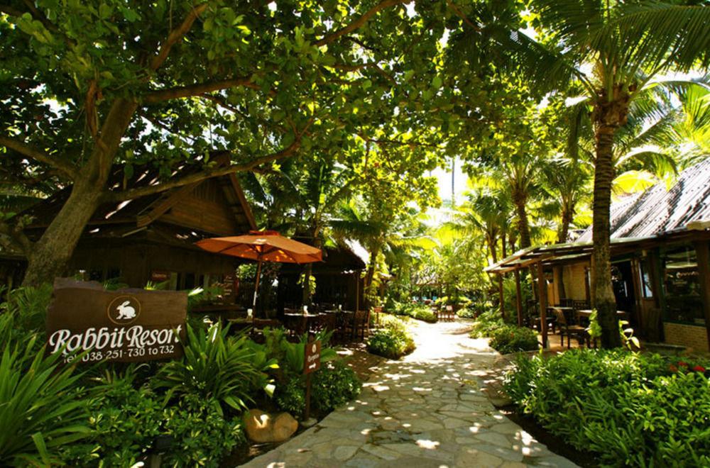tree Resort Jungle Garden rural area backyard Village yard flower cottage rainforest plant tropics Forest
