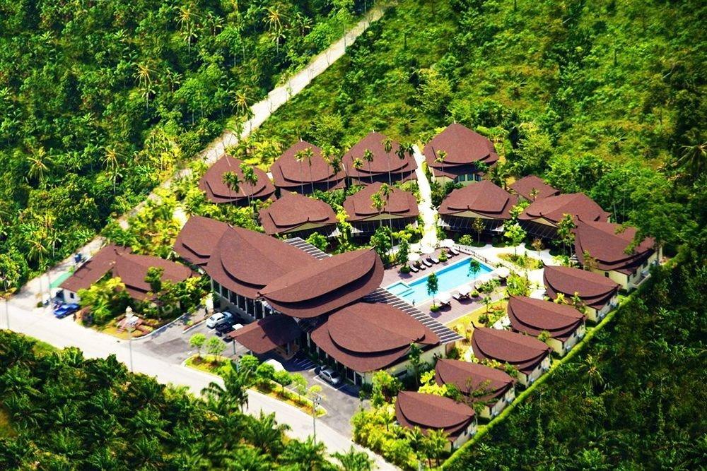 tree grass leisure Garden Resort Jungle amusement park backyard park screenshot flower plant set surrounded lush Forest