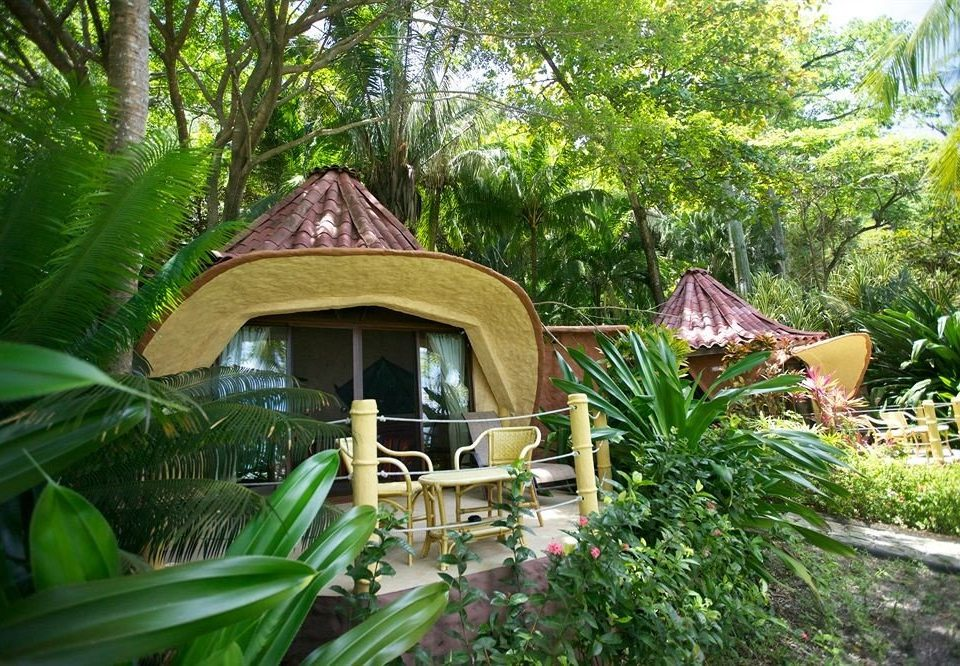 tree property Resort plant Garden backyard Jungle cottage rainforest yard eco hotel Villa Forest wooded