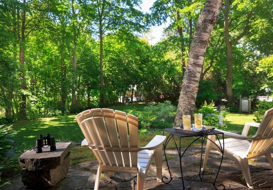 tree chair backyard yard Garden cottage lawn park outdoor structure Resort woodland Jungle porch set surrounded Forest shade dining table