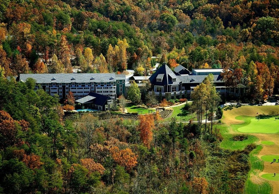Resort tree grass Garden sport venue aerial photography rural area autumn landscape plant Forest lush traveling hillside wooded