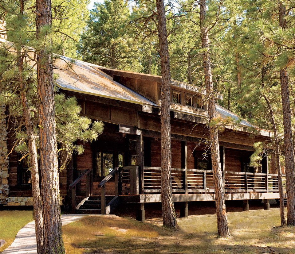 Glamping Hotels Montana Outdoors + Adventure Trip Ideas tree grass habitat wilderness natural environment hut log cabin Forest Jungle cottage park shack outdoor structure house wooded