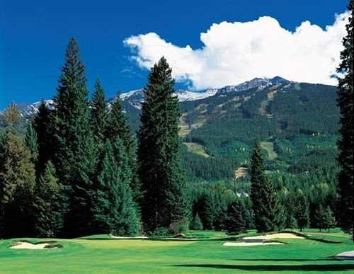 tree sky structure ecosystem sport venue mountain grassland golf course sports outdoor recreation golf club mountain range meadow temperate coniferous forest recreation Golf Forest
