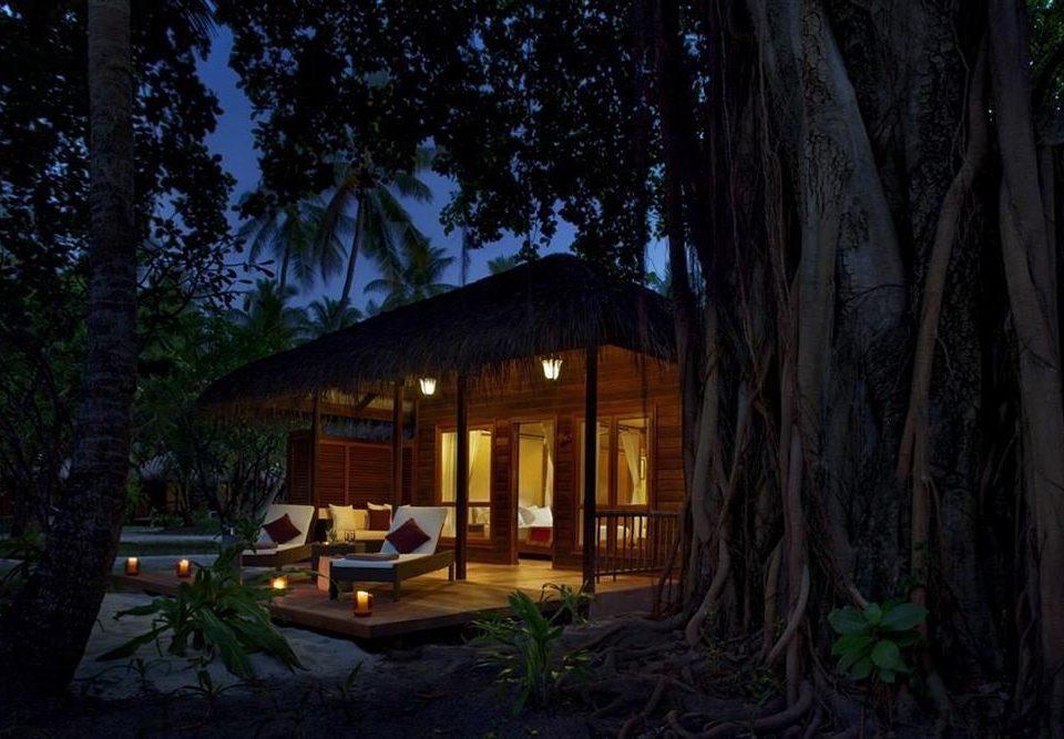 tree house night home plant landscape lighting Forest screenshot Jungle log cabin backyard cottage mansion