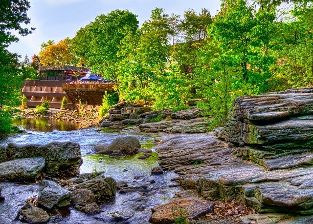 tree habitat wilderness River stream natural environment Nature water pond Forest rock Waterfall landscape rural area woodland autumn wetland Jungle water feature surrounded