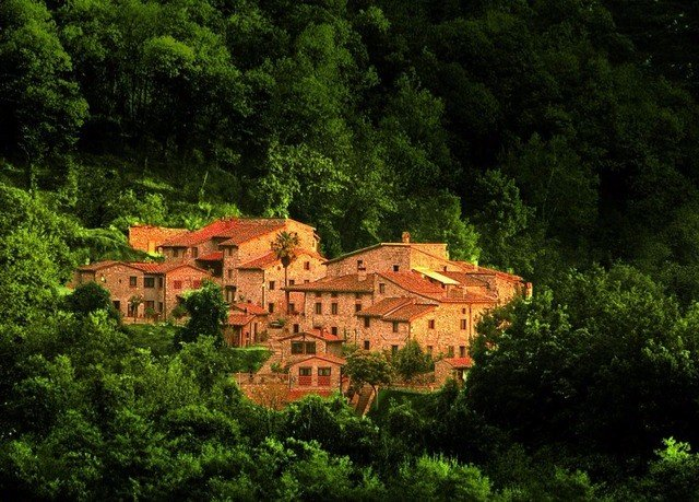 tree Forest house green rural area hill Jungle Village autumn castle wooded lush bushes surrounded