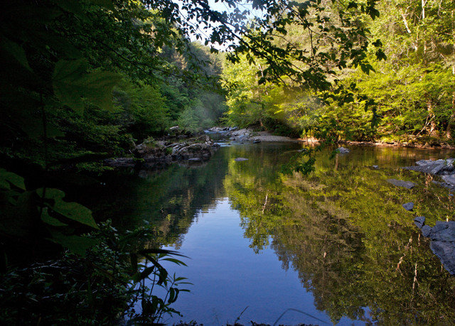 tree water Nature River creek wilderness Lake watercourse stream leaf Forest autumn pond woodland waterway surrounded wooded hillside
