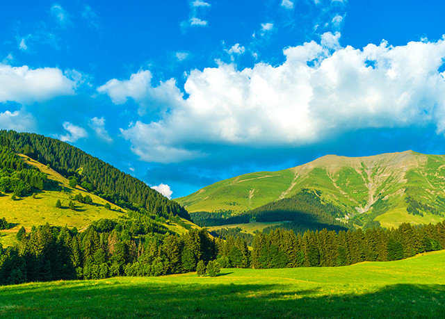 sky grass mountain mountainous landforms habitat grazing Nature green field mountain range tree grassland cloud pasture atmospheric phenomenon meadow hill natural environment ecosystem lush horizon plant grassy landscape plain rural area morning valley woody plant leaf alps Forest hillside plateau flower sunlight computer wallpaper meteorological phenomenon autumn beautiful clouds day highland