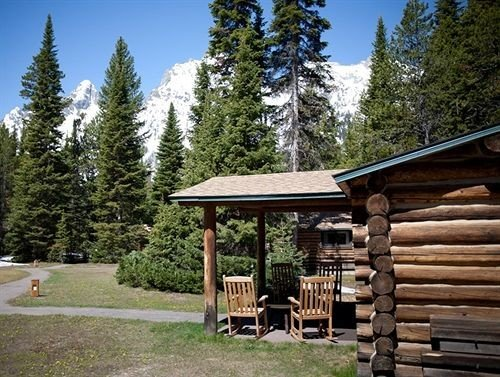 tree sky building log cabin wilderness hut house wooden cottage park Resort trail outdoor structure Forest