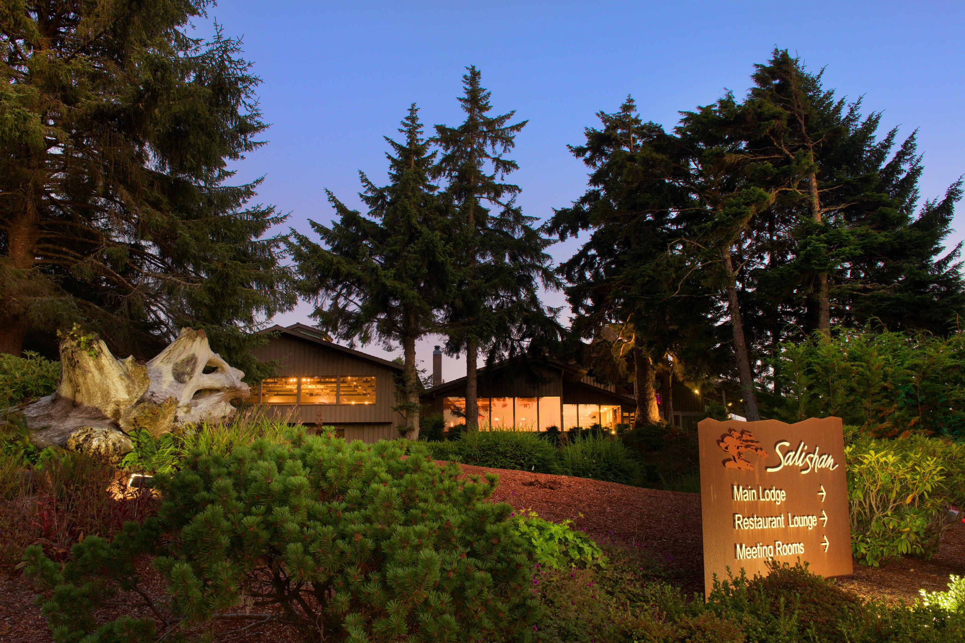 tree sky wilderness ecosystem sign conifer rural area Village plant hut Forest