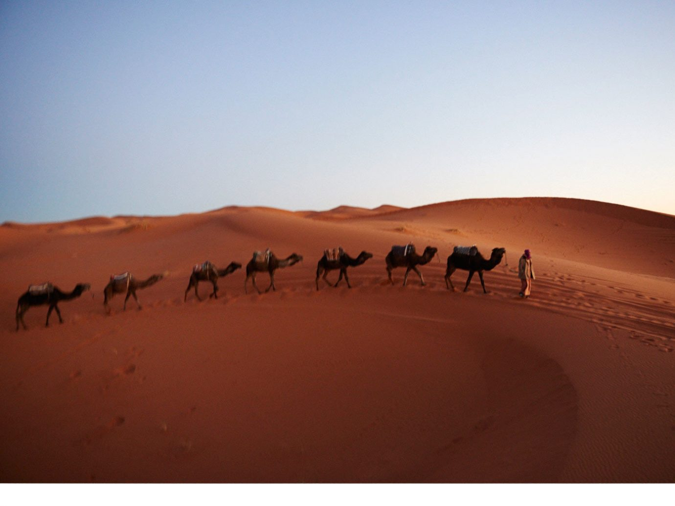 Jetsetter Guides Road Trips sky outdoor erg habitat sahara geographical feature natural environment Desert landform aeolian landform Beach Camel landscape grassland wadi plain camel like mammal sand plateau arabian camel sandy dune day