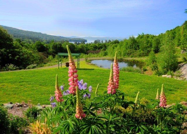 tree grass sky ecosystem agriculture plant flower meadow Garden lawn plantation botanical garden lush hillside