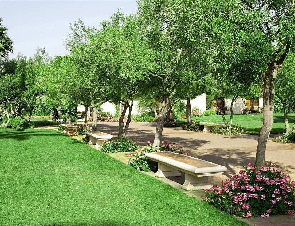 tree grass park botany yard Garden lawn plant backyard landscape architect flower botanical garden landscaping