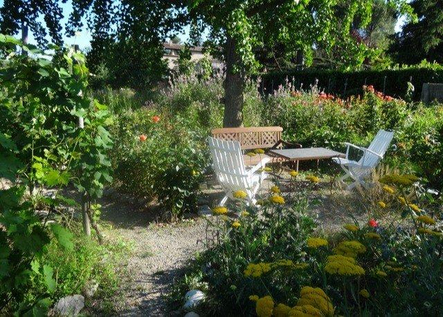 tree grass Garden flower pond backyard yard plant yellow landscape architect botanical garden landscaping
