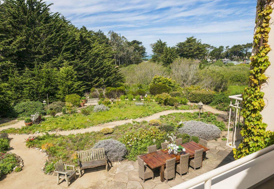 tree sky property flora Garden botany landscape flower backyard yard landscape architect plant stone wooded