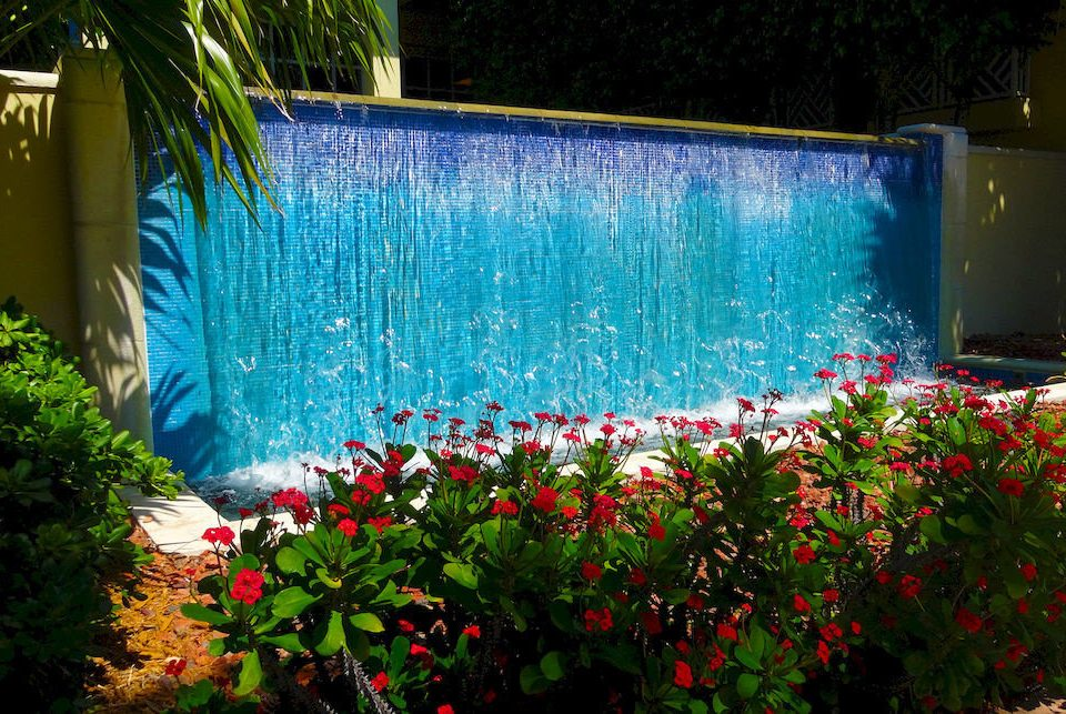 tree plant flower swimming pool water backyard grass Garden yard water feature pond lawn colorful bushes
