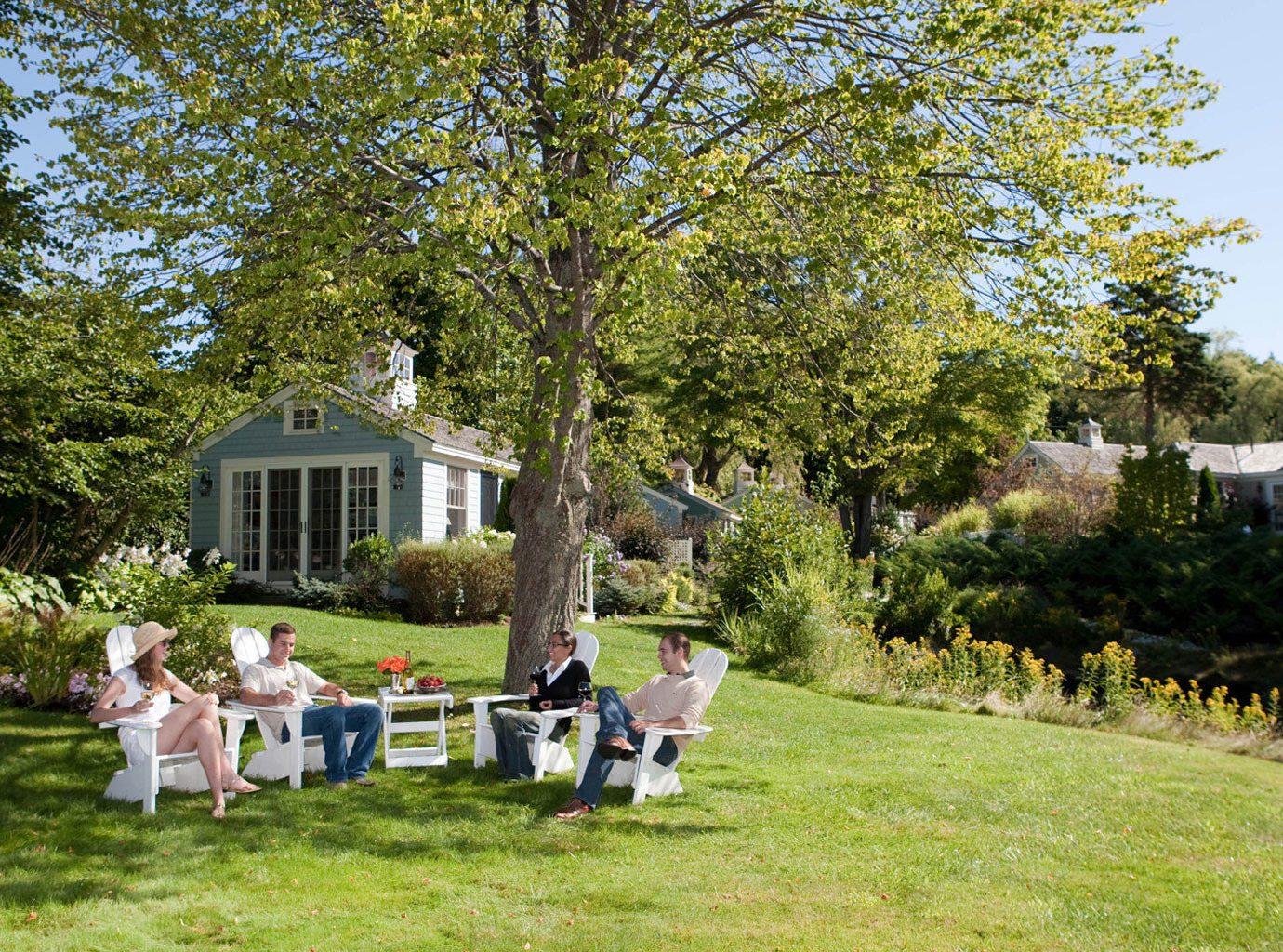 tree grass park Garden backyard home flower lawn yard woodland cottage plant