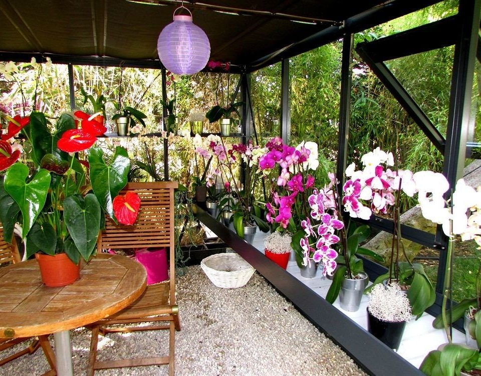 flower flower arranging floristry flora plant backyard land plant Garden floral design yard outdoor structure flowering plant dining table