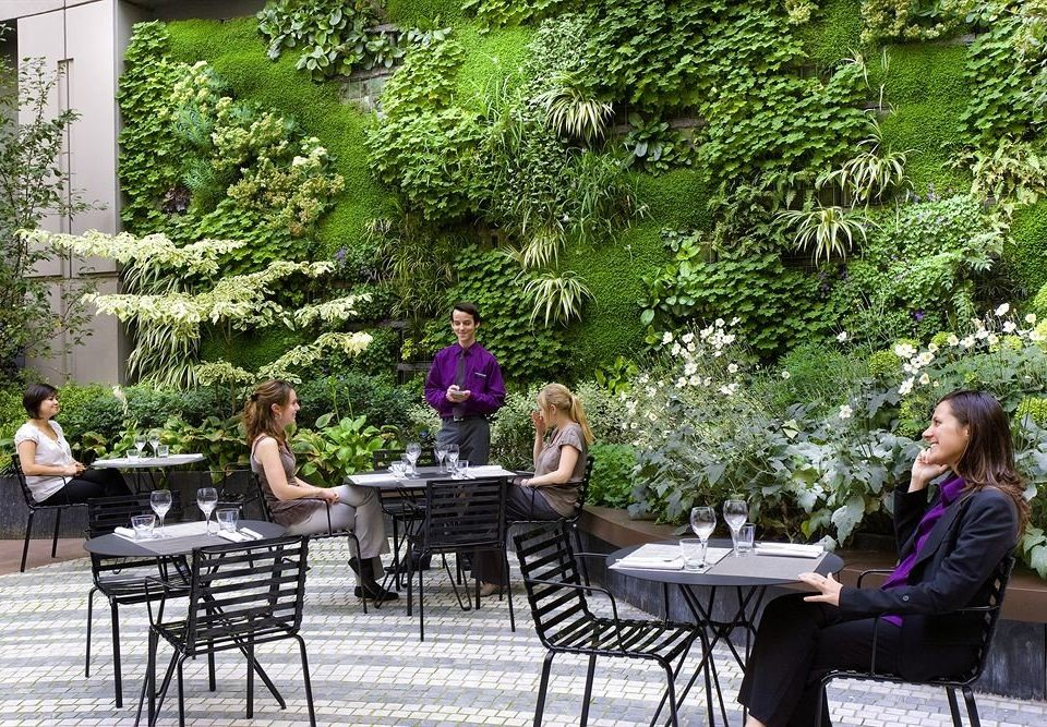 tree park Garden backyard flower dining table