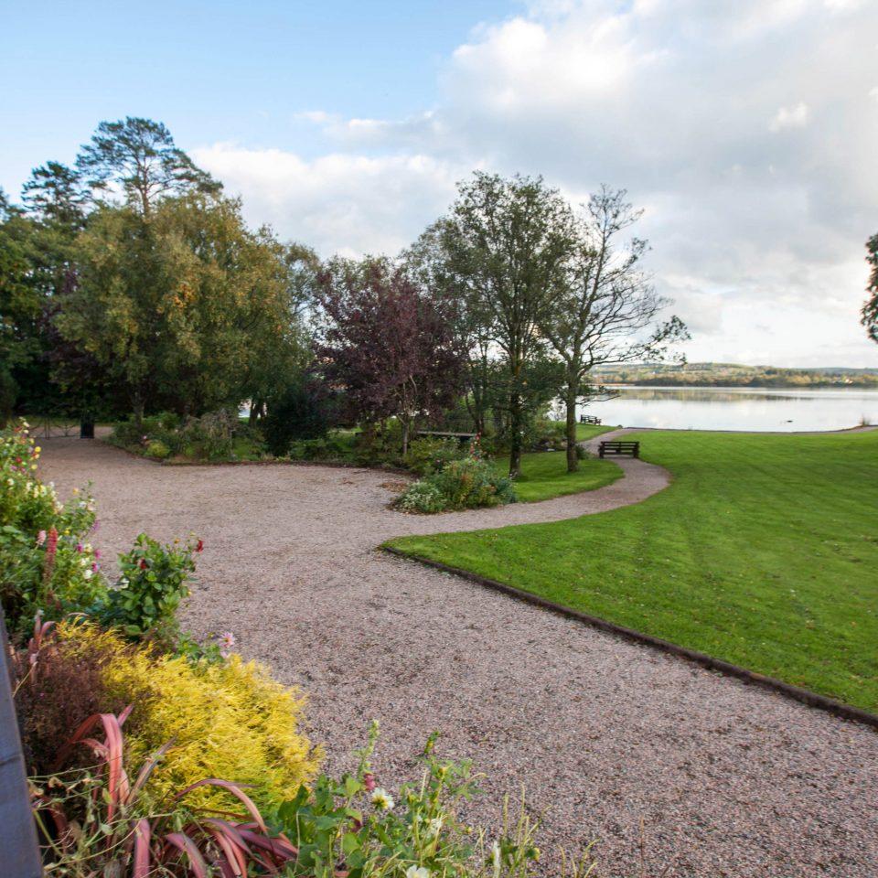 tree grass sky Garden lawn yard residential area path backyard flower rural area landscape home park walkway