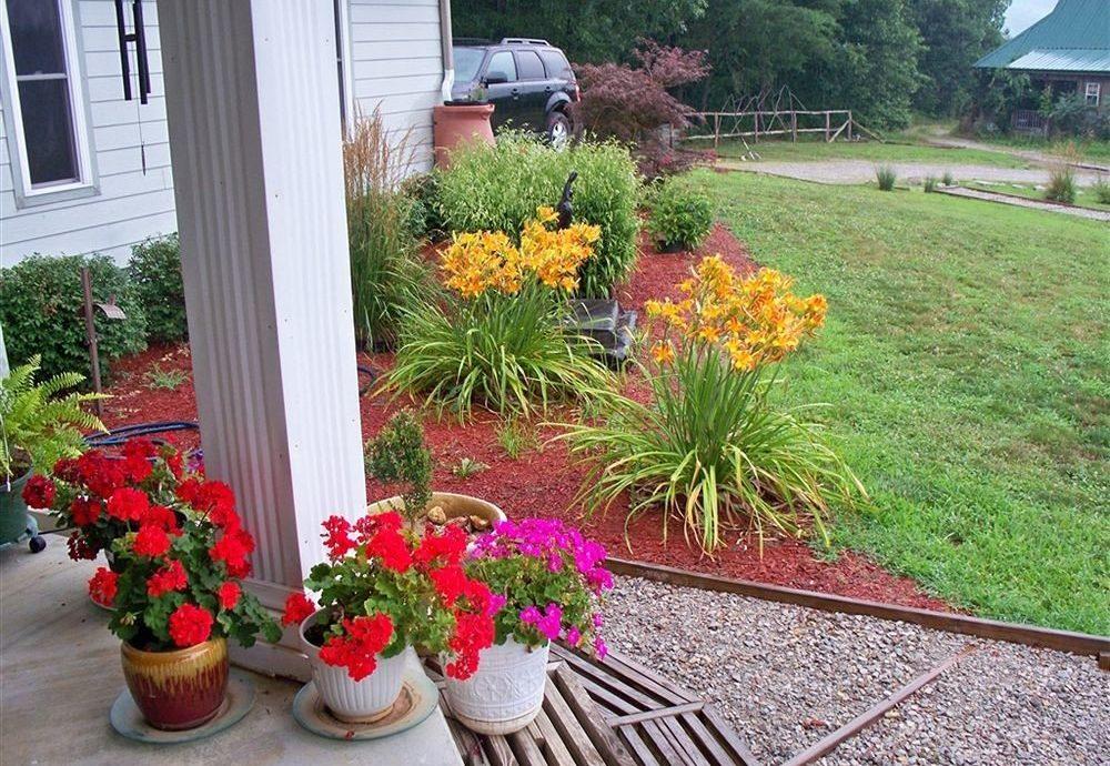 flower grass yard plant Garden backyard lawn walkway landscape shrub landscaping landscape architect porch
