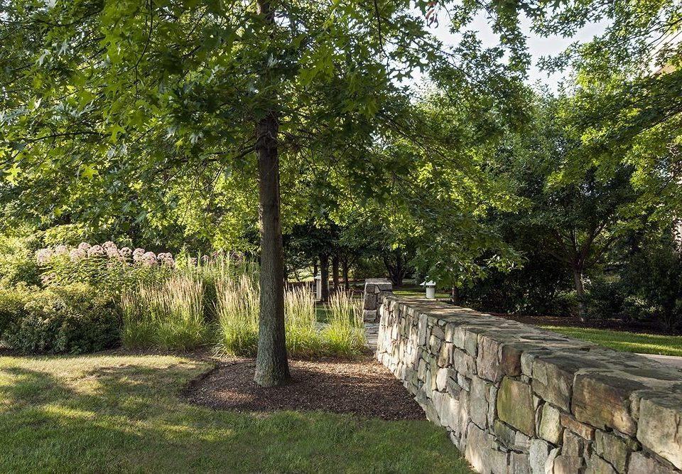 tree grass property park woodland Garden backyard yard lawn plantation shrub plant stone walkway