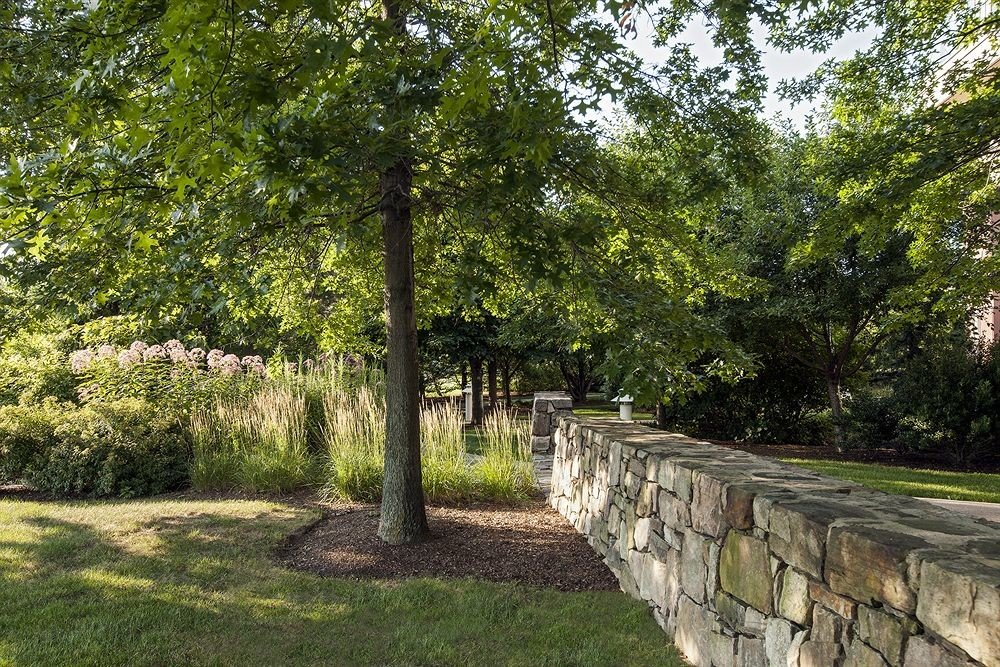 tree grass property park woodland Garden backyard yard lawn plantation shrub plant stone walkway