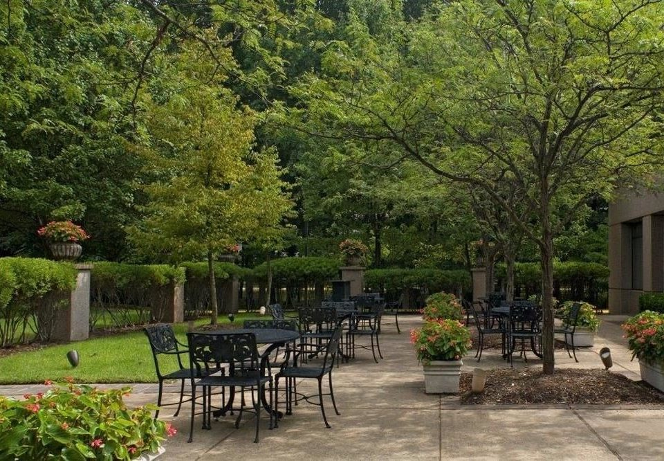 tree property park Garden backyard yard landscape architect lawn lined surrounded