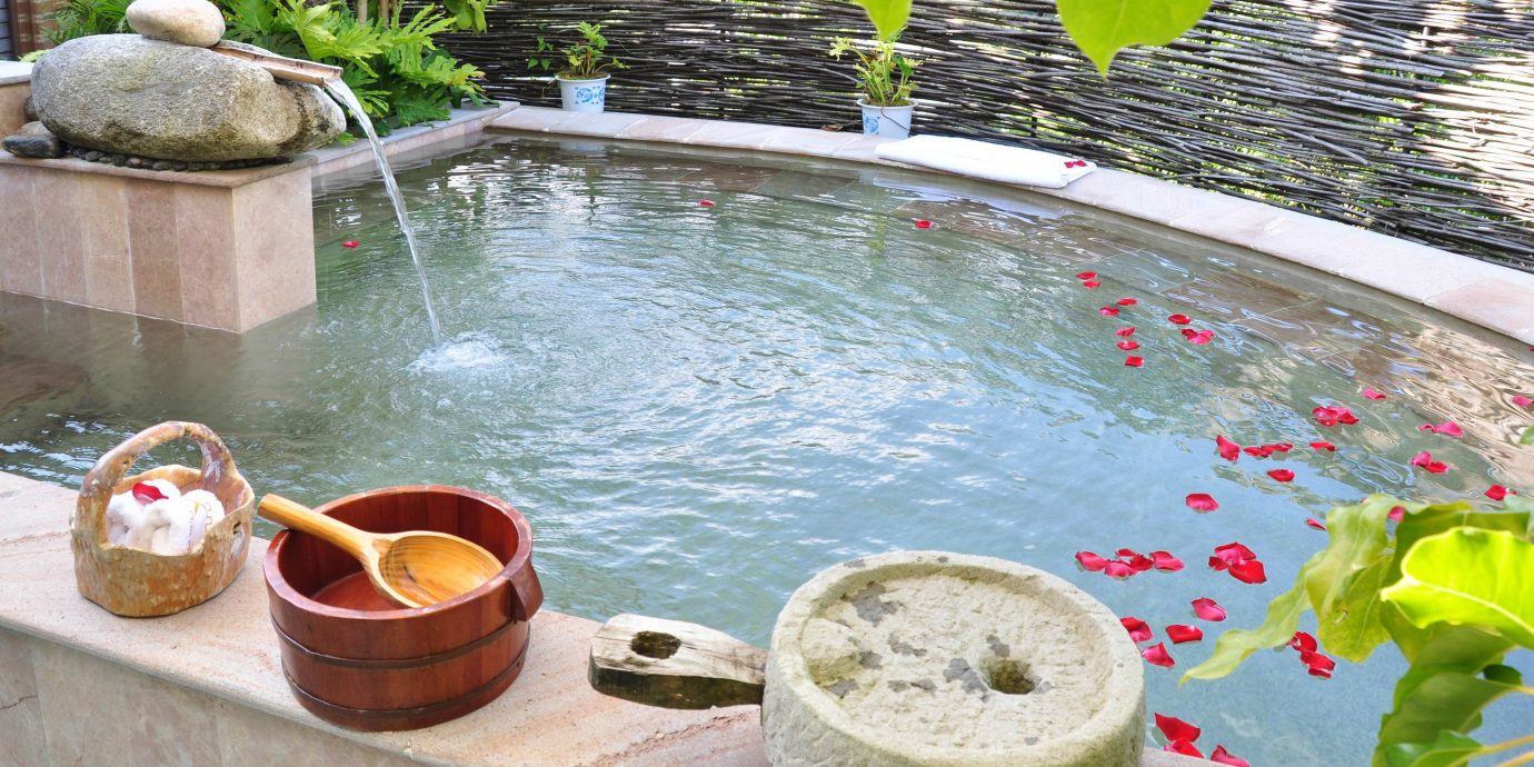 swimming pool leisure backyard plant water feature pond Garden
