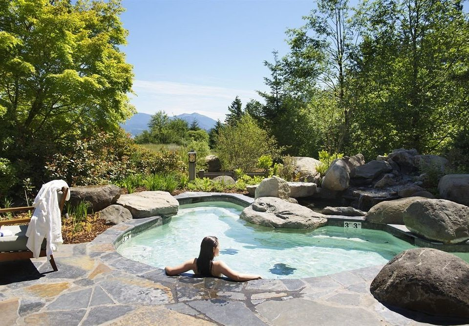 tree swimming pool rock backyard pond Garden water feature stone