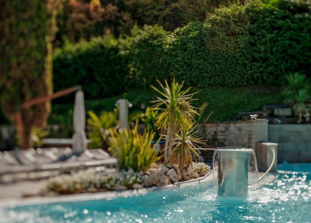tree swimming pool backyard Garden water feature