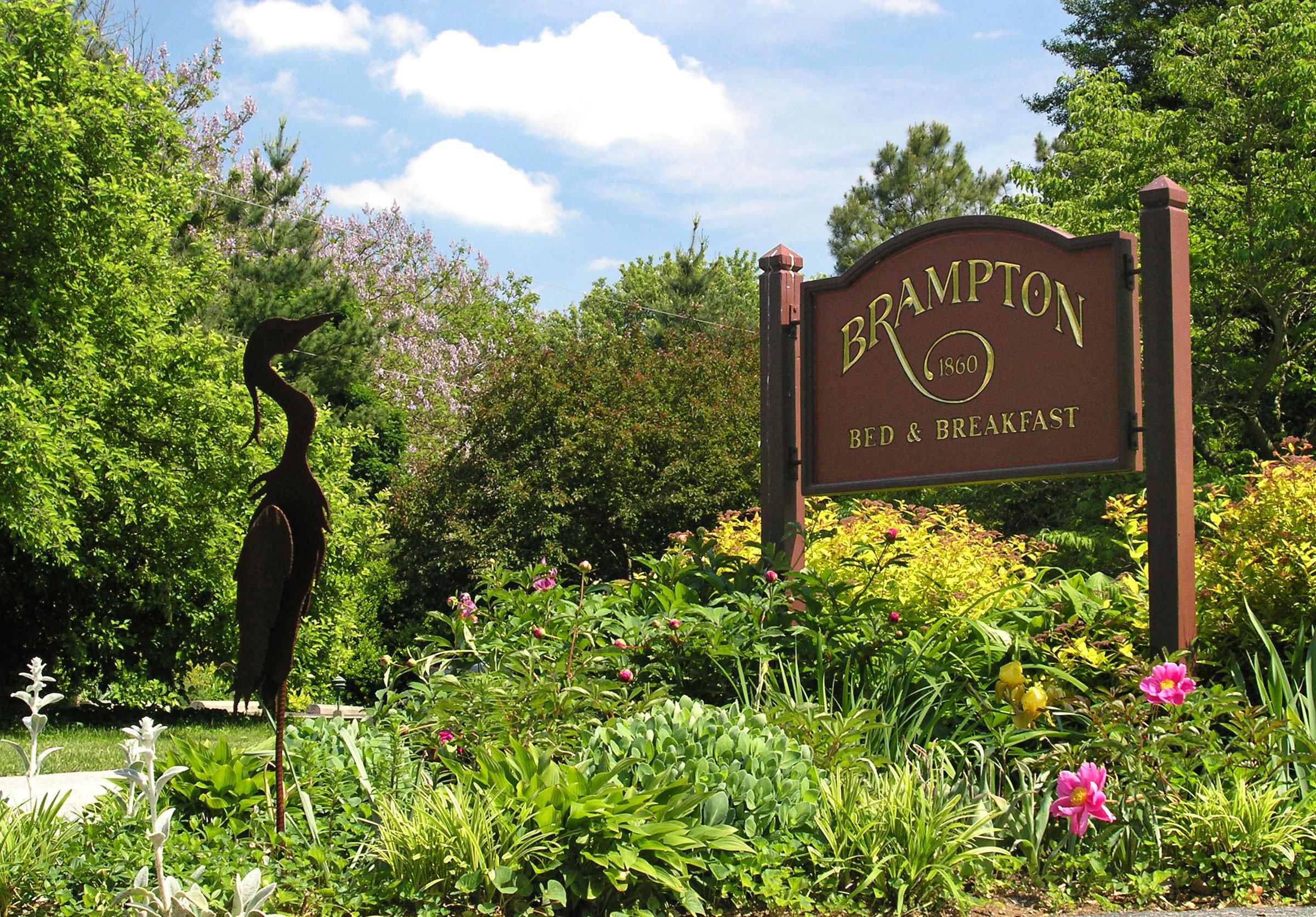 tree sky botany Garden park flower plant botanical garden bushes lush