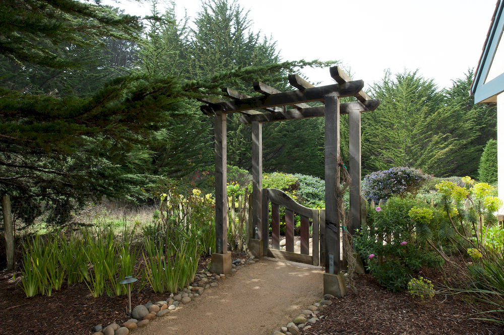 tree sky ground building botany Garden woody plant outdoor structure trail flower yard shrub plant dirt