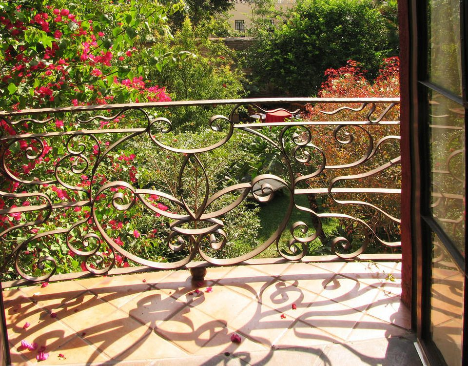 tree building botany iron glass Garden stained glass outdoor structure material flower