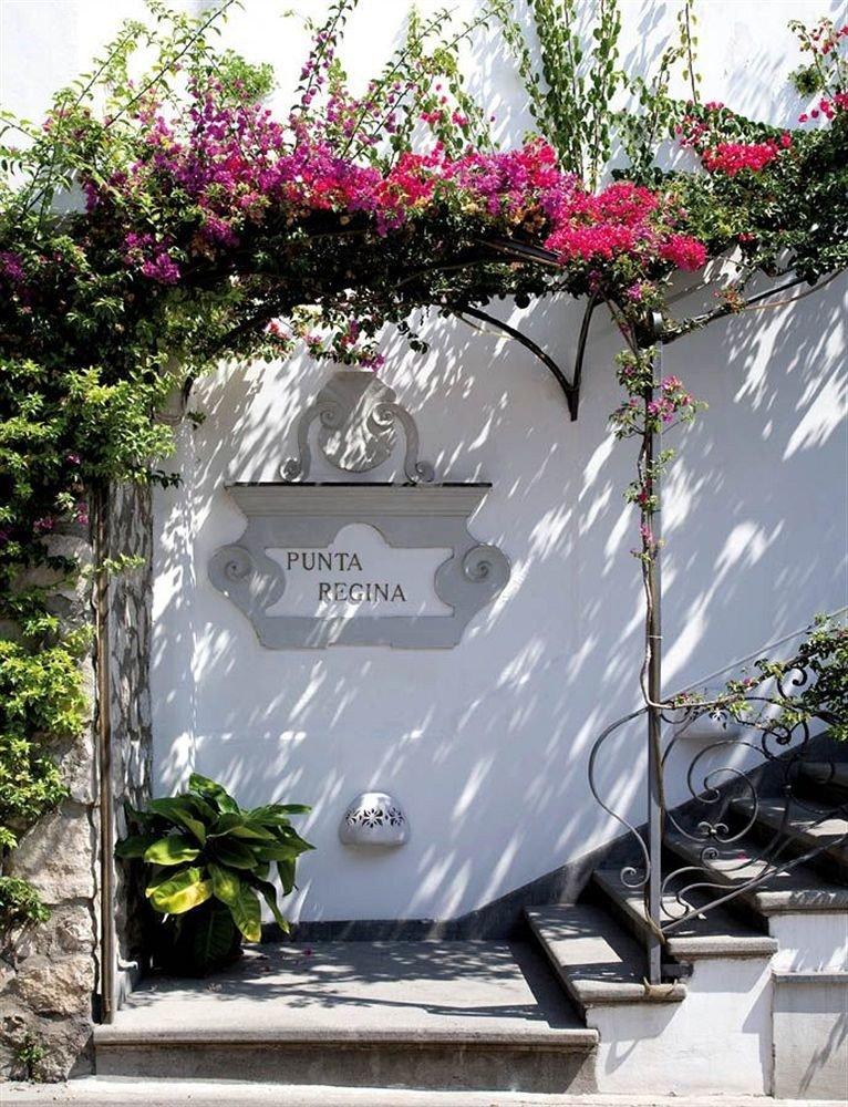 tree flower plant grave memorial headstone Garden