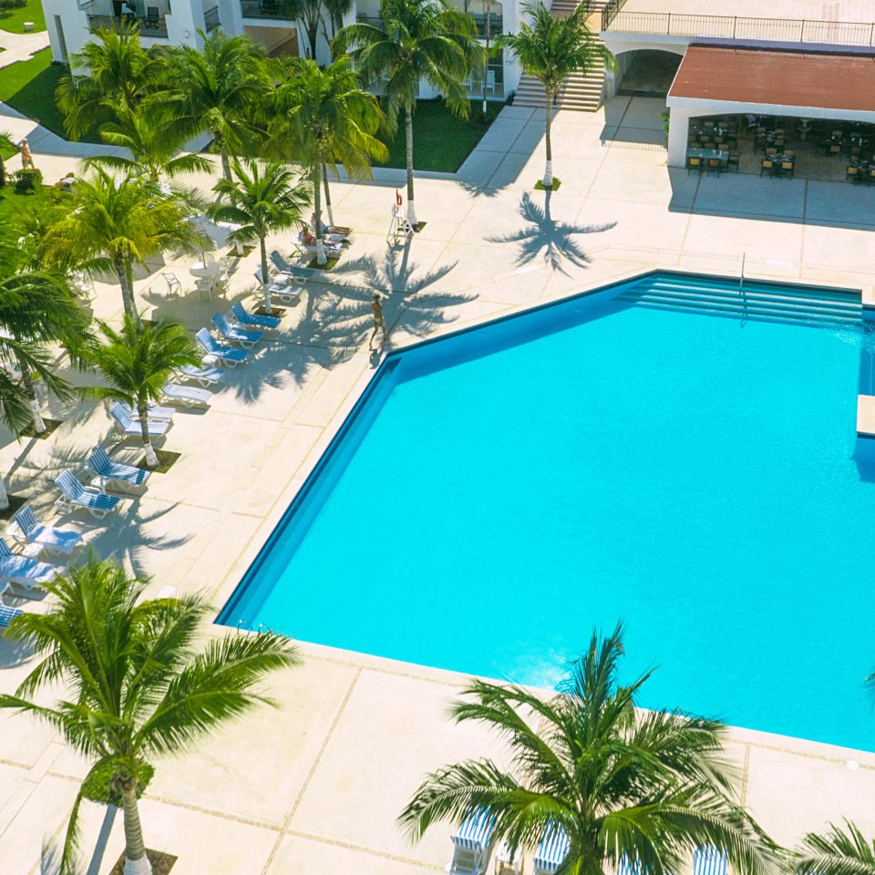 Island Pool tree plant palm Resort swimming pool property leisure building Villa condominium home mansion Golf backyard caribbean Garden bushes