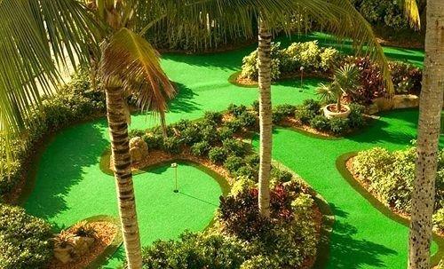 tree grass plant property Golf ecosystem Resort Jungle arecales Garden rainforest lawn botanical garden