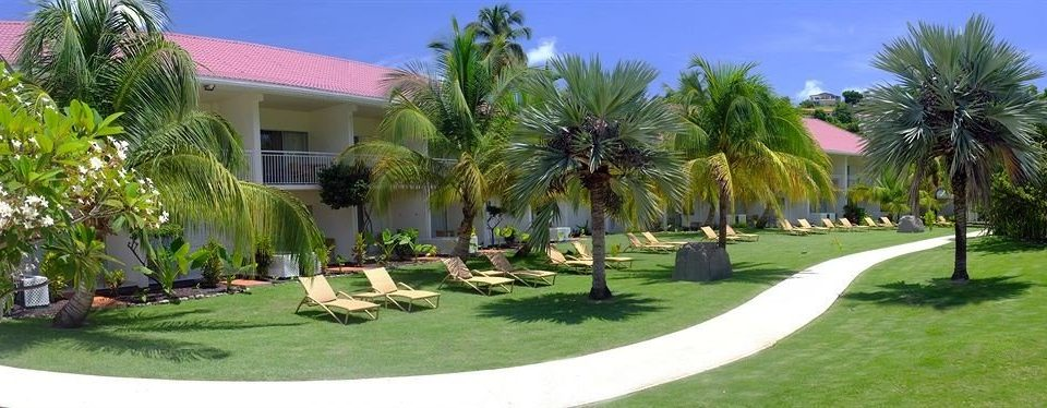 grass tree property palm Resort plant arecales Golf home Villa lawn residential area condominium mansion hacienda Garden